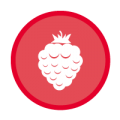 Website-Visuals-3Spoons-Icon-YearFruits